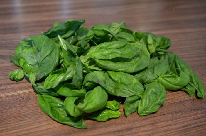 Basilic frais après congélation