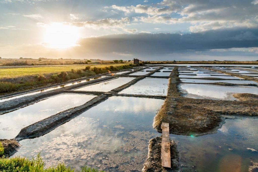 Pour cet été : pensez à la Vendée !