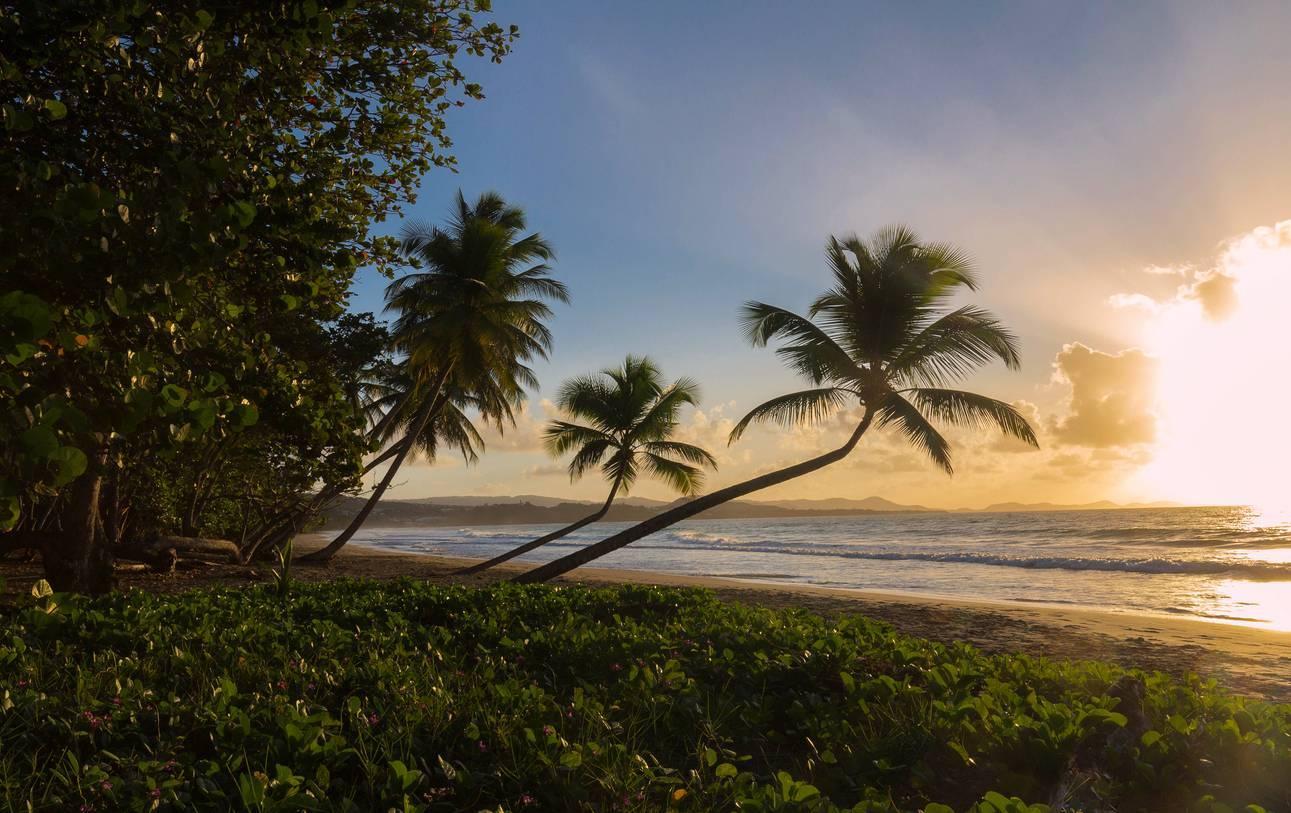séjour Martinique voyage