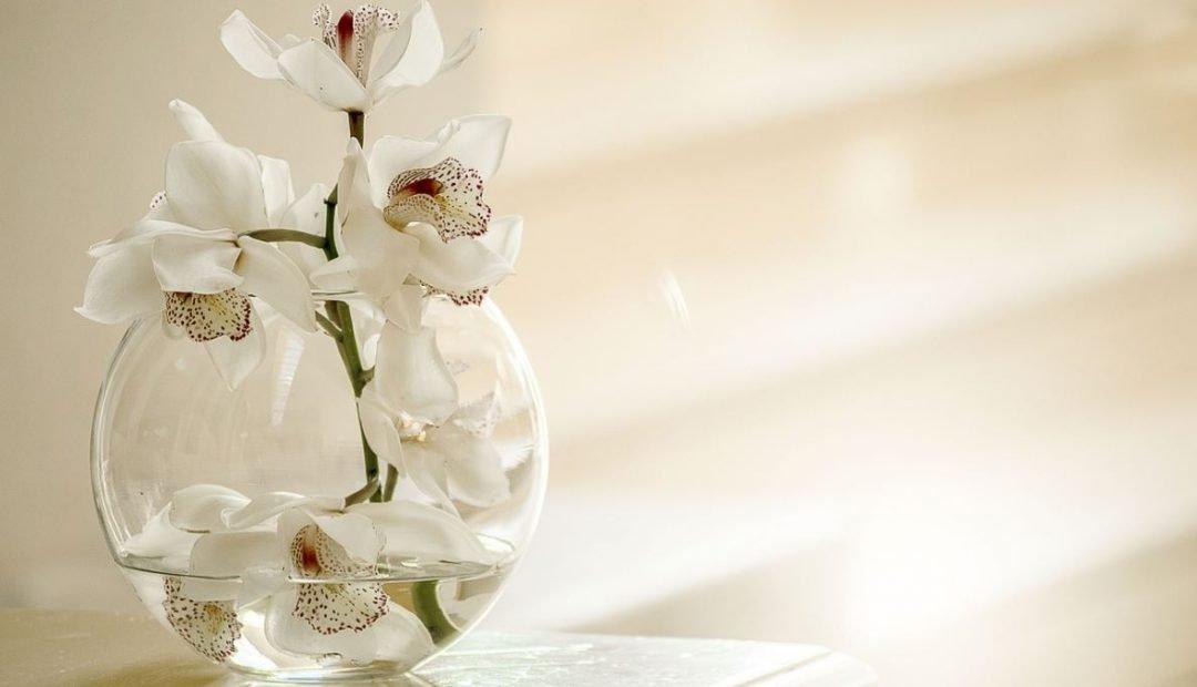 Idées déco : Pots et bocaux en verre pour embellir votre salon